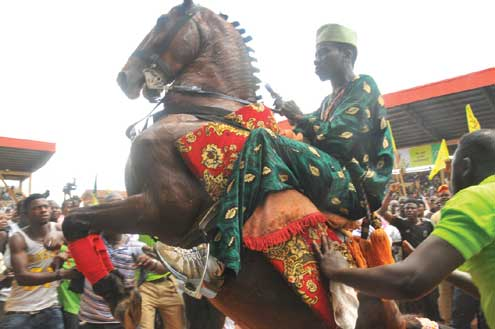 Horse rider on display