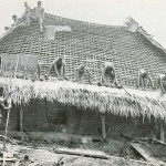 Ignp's in Pre Colonial Nigeria