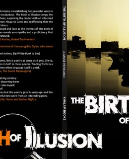 Birth of Illusion By Jumoke Verissimo