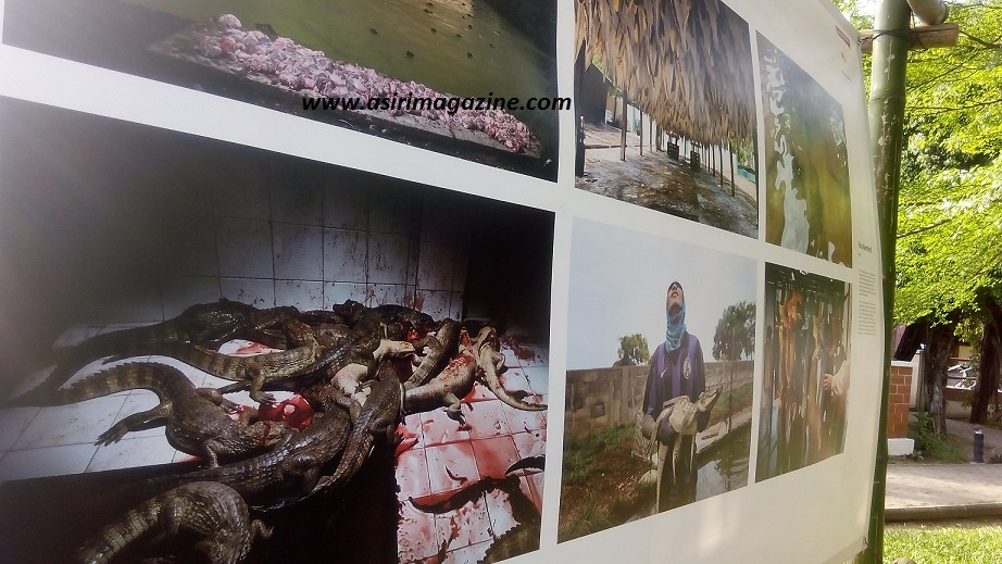 World Photo Press Exhibition at Freedom Park Lagos.